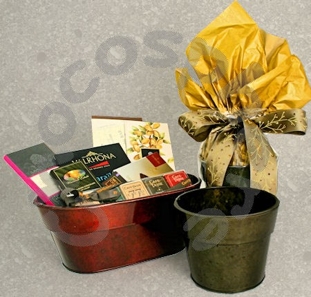 """Flower Pot"" Packaging"