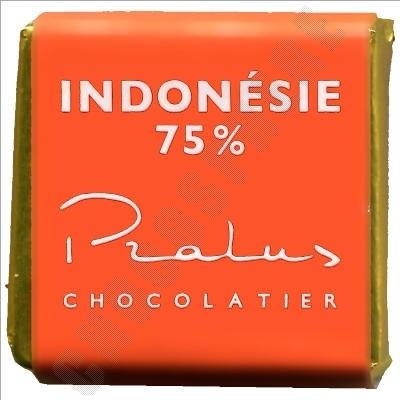 Indonesia 75% Square