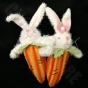 Stuffed (not chocolate) bunny-carrot combo