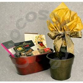"""Chocosphere """"Flower Pot"""" Packaging"""