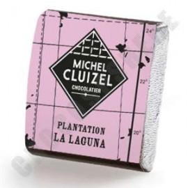 Michel Cluizel Plantation La Laguna Lait Tasting Square