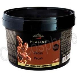 Valrhona 50% Pecan Praline Paste 5Kg
