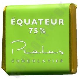 Pralus Ecuador BIO 75% Bulk Square