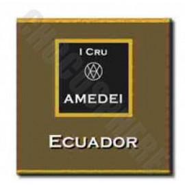 Amedei Ecuador Tasting Square - 4.5g