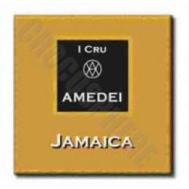 Amedei Jamaica Tasting Square - 4.5g