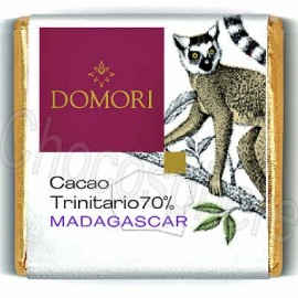 Domori Trinitario Madagascar 70% Dark Chocolate Tasting Square